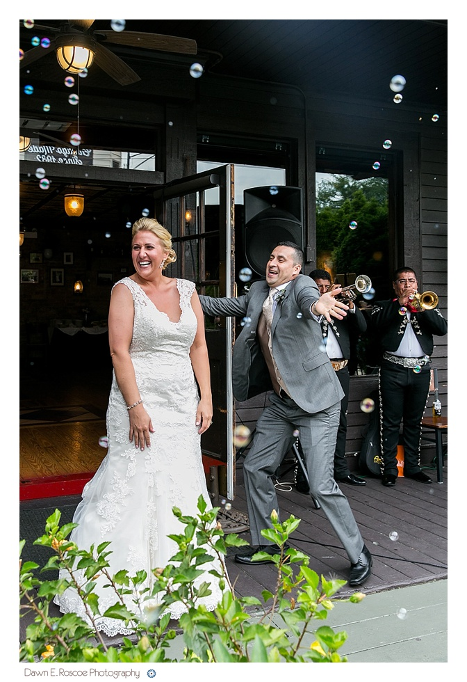 dawn-e-roscoe-photography-summery-outdoor-chicago-wedding-02912