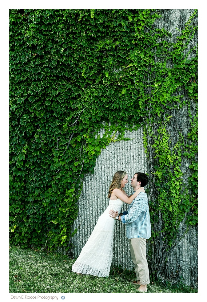dawn e roscoe photography lakefront lilly pond chicago engagement